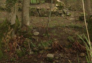 Stone in Corn Stook Yard